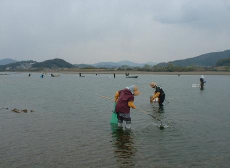 DSCF0003青海苔採り.JPG